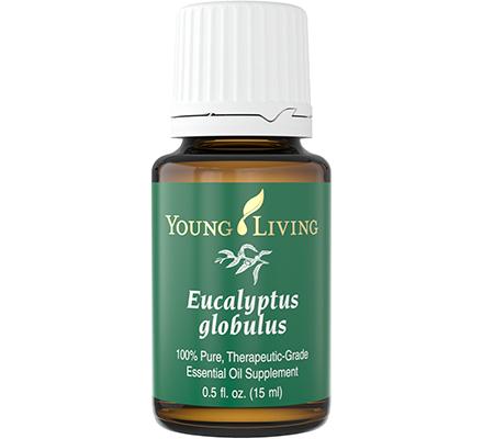 Ulei esențial Eucalyptus globulus